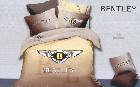 Постельное белье сатин бренд евро bb04-93